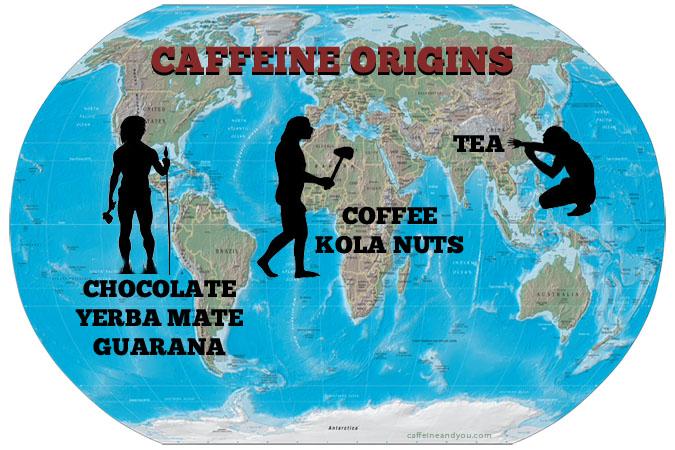 Caffeine origins